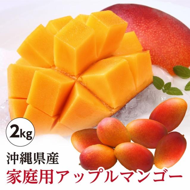 【送料無料】 沖縄県産 アップルマンゴー 家庭用 約2kg(4玉〜9玉) 訳あり