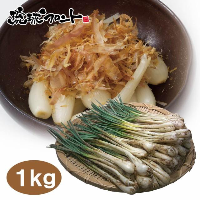 【送料無料】沖縄県産 島らっきょう 1kg(500gx2束) 沖縄 島ラッキョウ