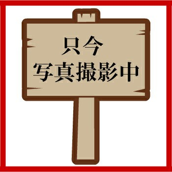 岡山県産 新鮮野菜 三角袋 #20 100枚