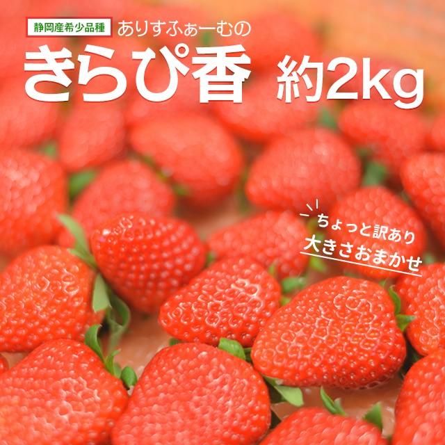 訳あり いちご きらぴ香 ありすふぁーむ 約2kg 送料無料 ワケあり 静岡 イチゴ 苺 ichigo 訳ありいちご 農家直送 静岡県 果物 フルーツ