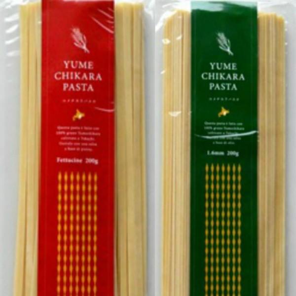 パスタ 北海道産小麦 ゆめちから使用 「ユメチカラパスタ 選べる4袋セット」 メール便 送料無料