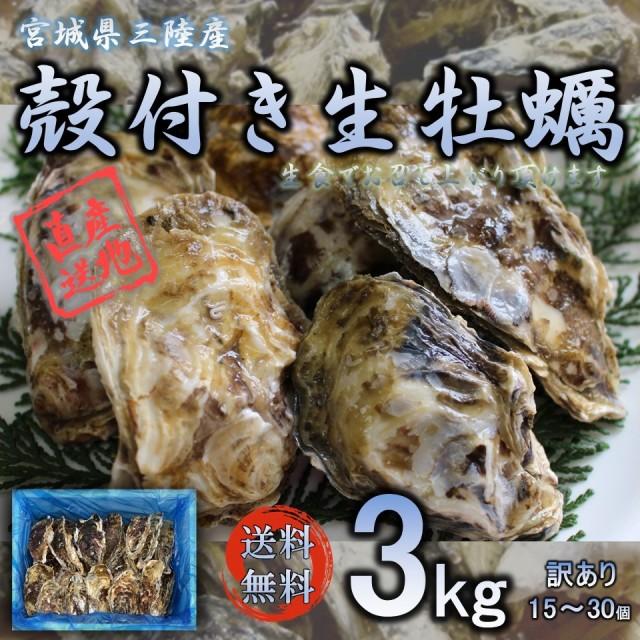 牡蠣 生食OK みちのく三陸産 殻付き生牡蠣 3kg 送料無料 放卵後の希少な殻牡蠣 亜鉛 ビタミン タウリン等栄養豊富
