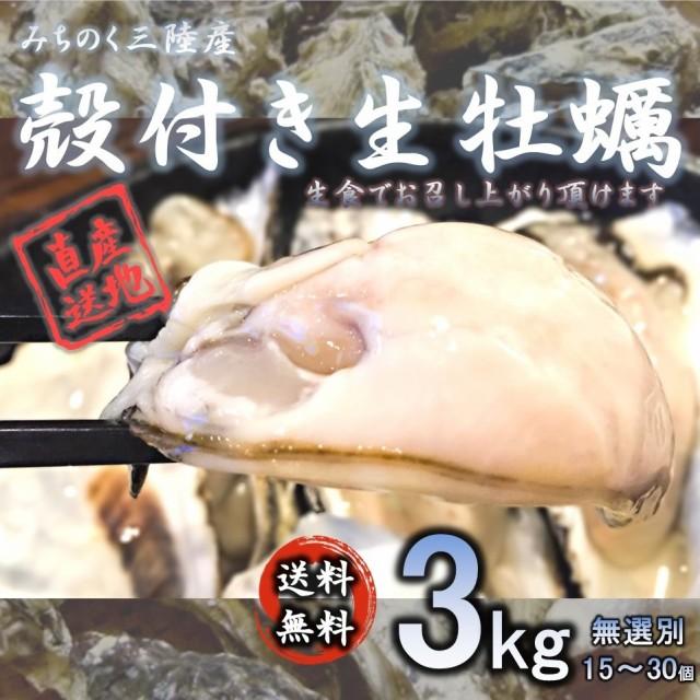 牡蠣 生食OK みちのく三陸産 殻付き生牡蠣 3kg 送料無料 バーベキュー 食欲の秋 新鮮 石巻 宮城 岩手 焼く 蒸す 煮る 揚げる 等様々なお