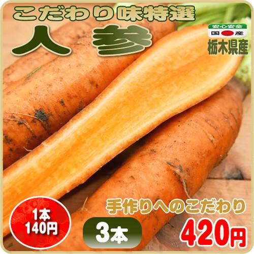 美味しさだけを追及したこだわり味特選 人参 3本 栃木県産