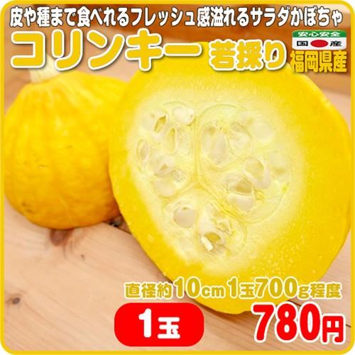 フレッシュ感溢れるサラダかぼちゃ コリンキー 若採り 1玉 福岡県産