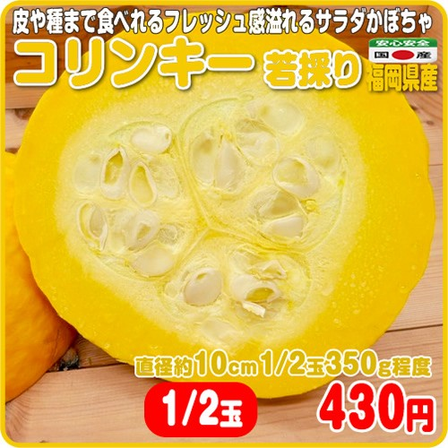 フレッシュ感溢れるサラダかぼちゃ コリンキー 若採り カット1/2 福岡県産