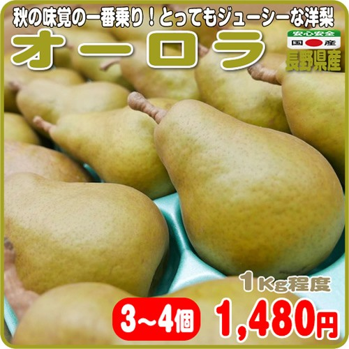 秋の味覚の一番乗り!とってもジューシーな洋梨 オーロラ 3〜4個 1Kg程度 長野県産