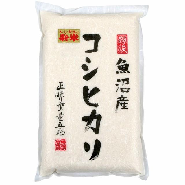 新潟 魚沼産コシヒカリ 5kg 2020年度産 真空パック 精米 白米