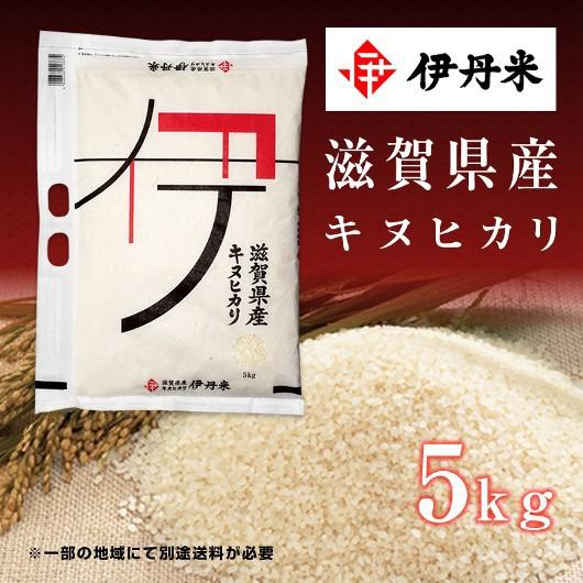 5kg お米 令和2年産 滋賀県産 キヌヒカリ 敬老の日 熨斗承ります きぬひかり 送料無料 白米