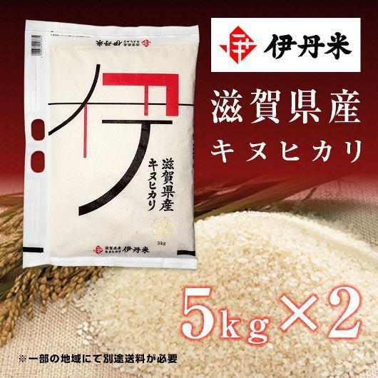 10kg(5kg×2袋) お米 令和2年産 滋賀県産 キヌヒカリ 敬老の日 熨斗承ります きぬひかり 送料無料 白米