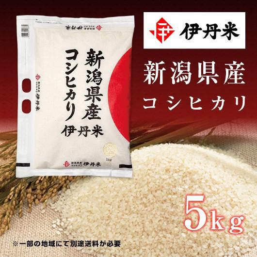 5kg お米 令和2年産 新潟県産 コシヒカリ お中元 熨斗承ります こしひかり 送料無料 白米