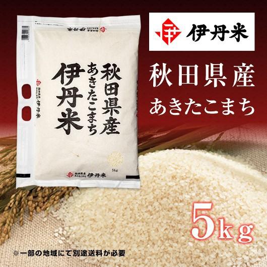 5kg お米 令和2年産 秋田県産 あきたこまち 母の日 熨斗承ります アキタコマチ 送料無料 白米