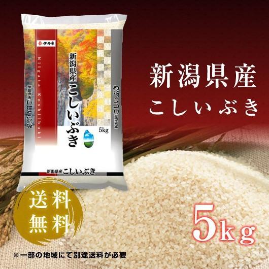 5kg お米 令和2年産 新潟県産 こしいぶき お中元 熨斗承ります コシイブキ 送料無料 白米