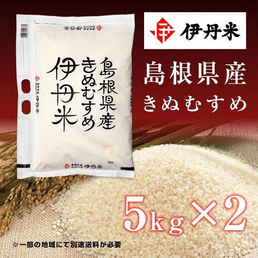 10kg(5kg×2袋) お米 令和2年産 島根県産 きぬむすめ 父の日 熨斗承ります キヌムスメ 送料無料 白米