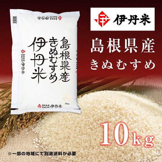 10kg お米 令和2年産 島根県産 きぬむすめ 父の日 熨斗承ります キヌムスメ 送料無料 白米
