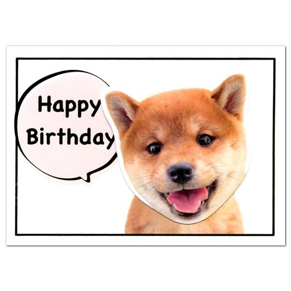 バースデーカード 柴犬 GK-200 アクティブコーポレーション イヌの顔がフルフル揺れる二つ折り誕生日カード Birthday Card グリーティン