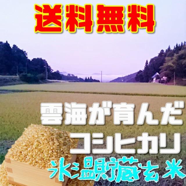 コシヒカリ 氷温熟成 玄米10kg送料無料 令和2年産雲海が育んだ岡山びほく産