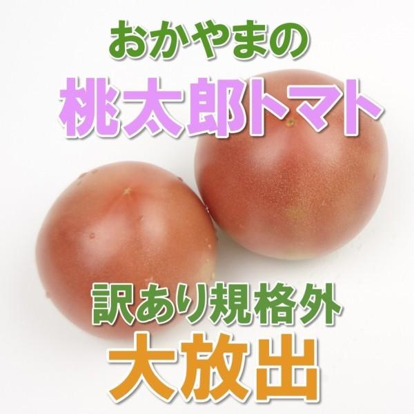 トマト桃太郎 2kg 送料無料 訳あり規格外品 岡山びほく産