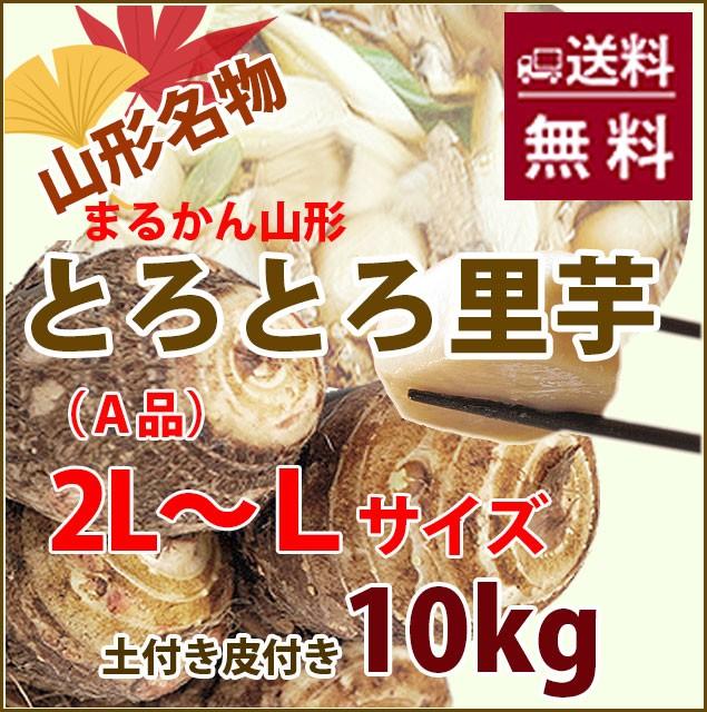 里芋 さといも 山形 送料無料 芋 土付き皮付き A品 2L〜L 10kg 丸勘山形 さといも サトイモ とろとろ 山形 海老芋 粉 皮むき 冷凍 芋