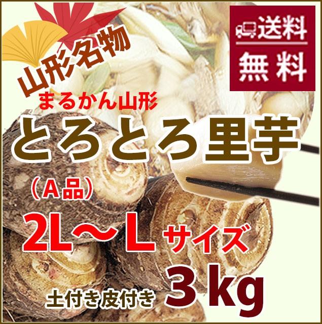 里芋 さといも 山形 送料無料 芋 土付き皮付き A品 2L〜L 3kg 丸勘山形 さといも サトイモ とろとろ 山形 海老芋 粉 皮むき 冷凍 芋