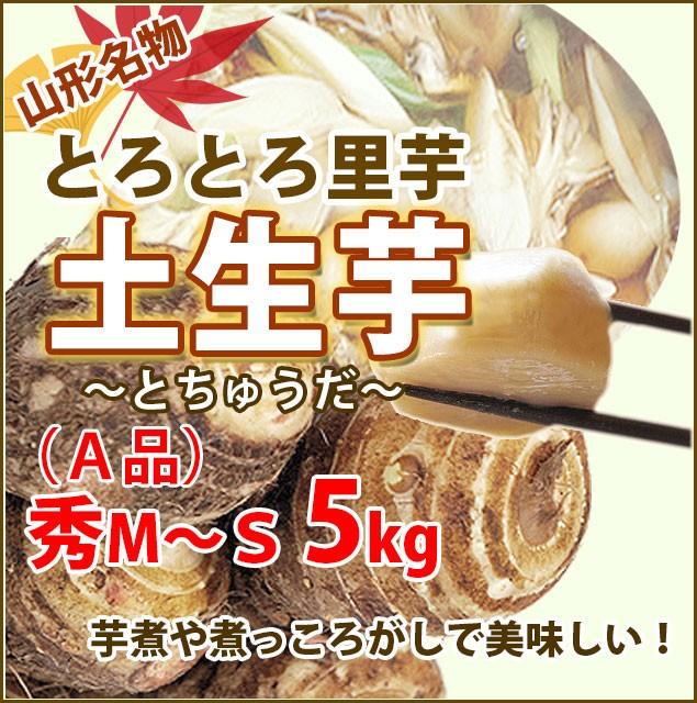 里芋 さといも サトイモ 山形 送料無料 土生芋 A品 M〜Sサイズ 5kg 村山市 土生田 とちゅうだ 芋煮・煮っころがしにおススめ 旬 贈答