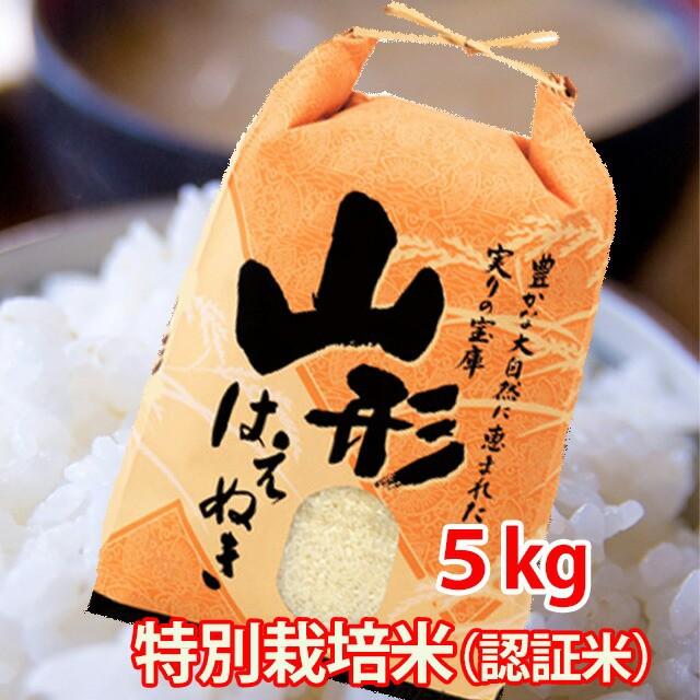 米 5kg 送料無料 白米 はえぬき 山形産 特別栽培米 新米 農産物 ポイント消化 100円 300円 500円