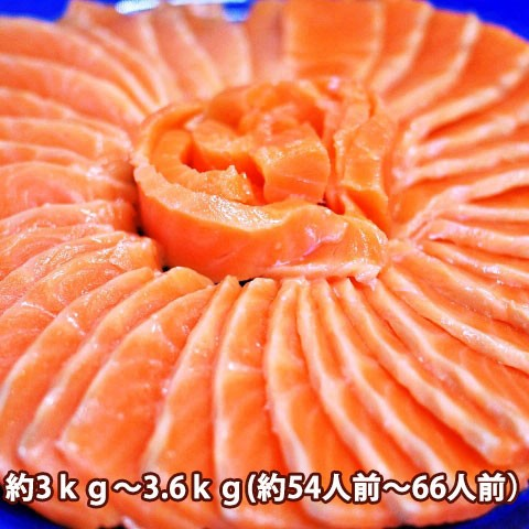 サーモン 刺身 みやぎサーモン 国産 鮭 約3kg〜3.6kg 54人前 〜 66人前 大トロ 生食用 【 銀ざけ 銀さけ 銀鮭 鮮魚 アトランティックサー