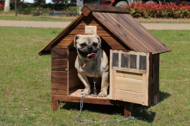 新作 天然木 犬舎 炭化木 DOG HOUSE 屋外用 中型犬対応 DIY組み立て Mサイズ