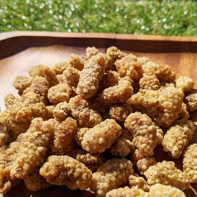 乾燥ホワイトマルベリー 50g (白桑の実) ドライフルーツ 砂糖不使用 無添加 桑 桑の実 無糖 ペルシャ産 天日干し