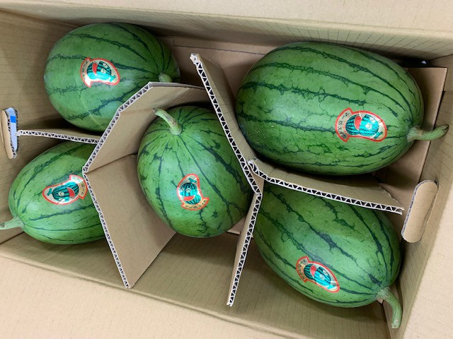 【フルヤの安心フルーツ】特別栽培 小玉スイカ 9〜10kg(3〜5玉)