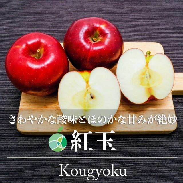 送料無料 紅玉 りんご 約10kg 36〜70玉 長野県産