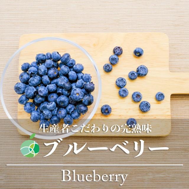 送料無料 ブルーベリー 栽培時農薬不使用 約200g 長野県長野市産