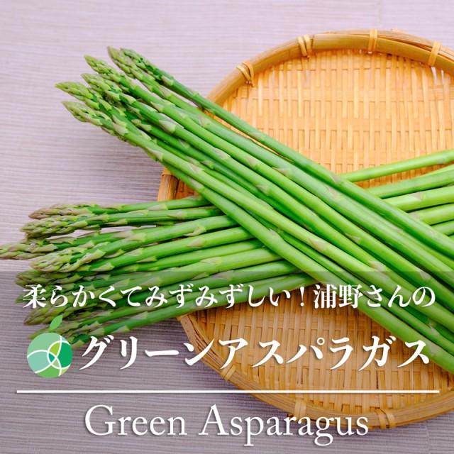送料無料 浦野さんのグリーンアスパラガス 約1kg 細 60〜70本 長野県・須坂市産
