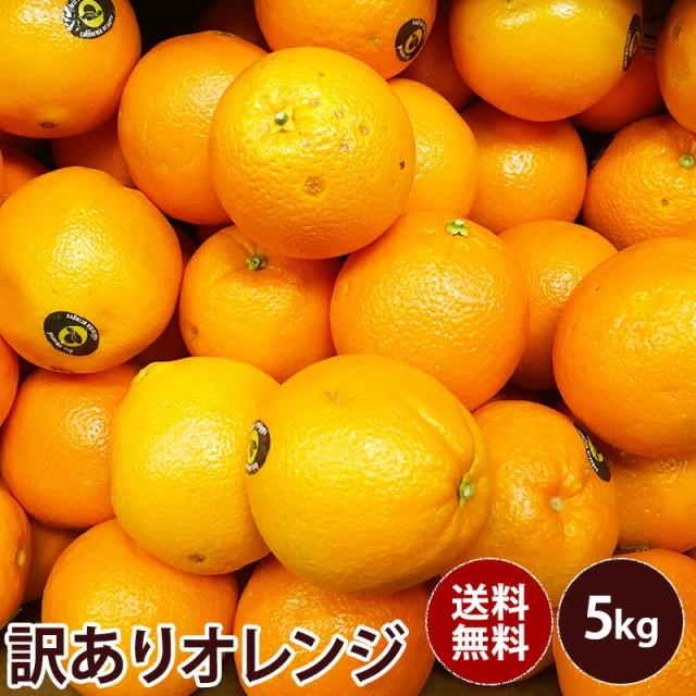【オーストラリア産】訳ありオレンジ 訳あり ギフト 果物 フルーツ