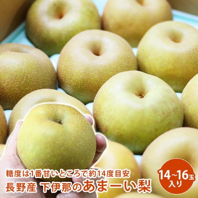長野産 下伊那のあまーい梨 5kg 14〜16玉入り 梨 送料無料 ギフト 果物 フルーツ 栄養豊富