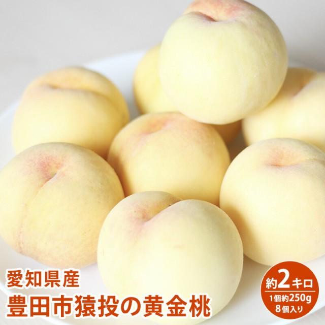 【クール便】愛知県産豊田市 黄金桃 約2キロ 250g程度 8入り もも【送料無料】