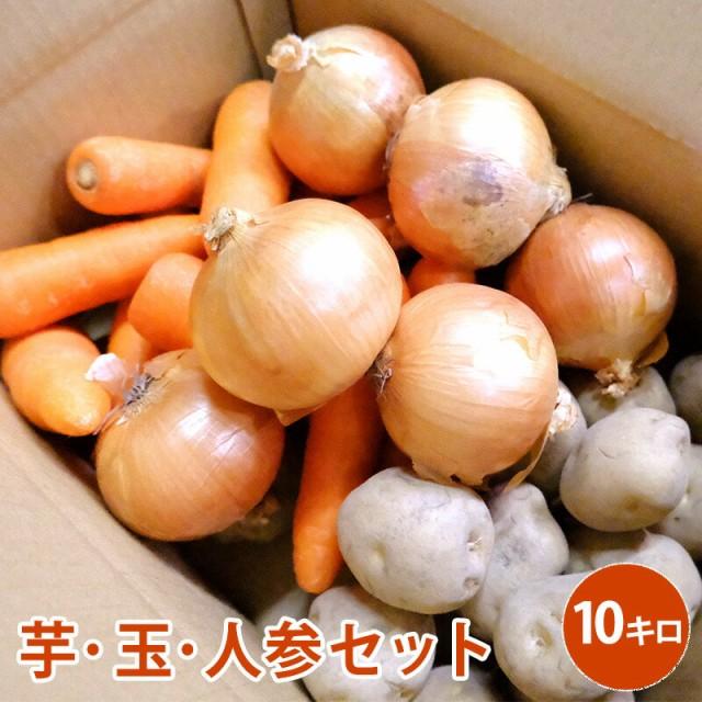 芋・玉・人参セット 10キロ 野菜 じゃがいも にんじん たまねぎ セット 男爵 北海道北見産 煮物 カレー 野菜セット