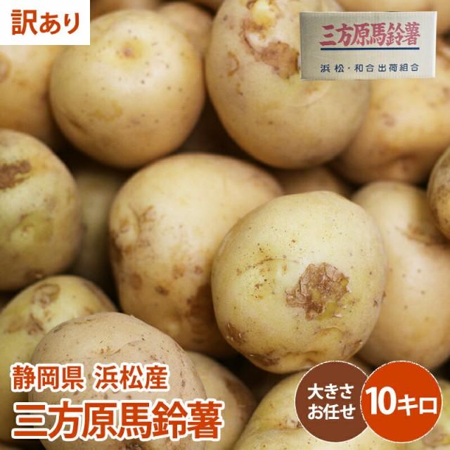 【静岡県 浜松産】【訳あり】三方原馬鈴薯 10kg じゃがいも 野菜 ジャガイモ 送料無料