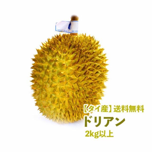 【タイ産】ドリアン 2kg以上 1個売り 果物の王様 送料無料 dorian pine 甘い 果物 フルーツ