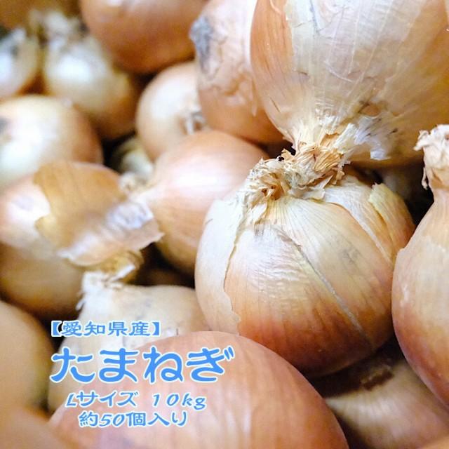 【愛知県産】たまねぎ 10kg L 約50個入 1玉約200g 北見 玉葱 玉ねぎ オニオン onion カレー 業務用