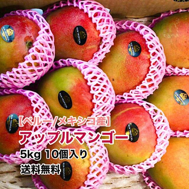 【ペルーメキシコ産】アップルマンゴー 10個入 5kg 箱売り 送料無料 マンゴー