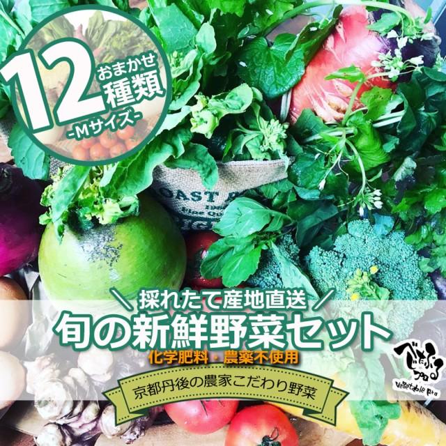 京丹後産 旬のお野菜セット12種類入り(Mサイズ)京野菜 有機野菜 無農薬 オーガニック 国産 産地直送 野菜 冷蔵 新鮮 詰め合わせ おまか