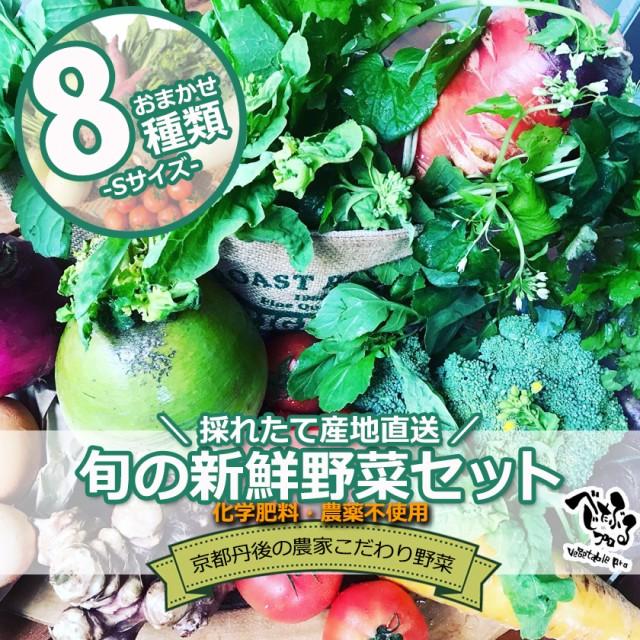 京丹後産 旬のお野菜セット8種類入り(Sサイズ)京野菜 有機野菜 無農薬 オーガニック 国産 産地直送 野菜 冷蔵 新鮮 詰め合わせ おまか
