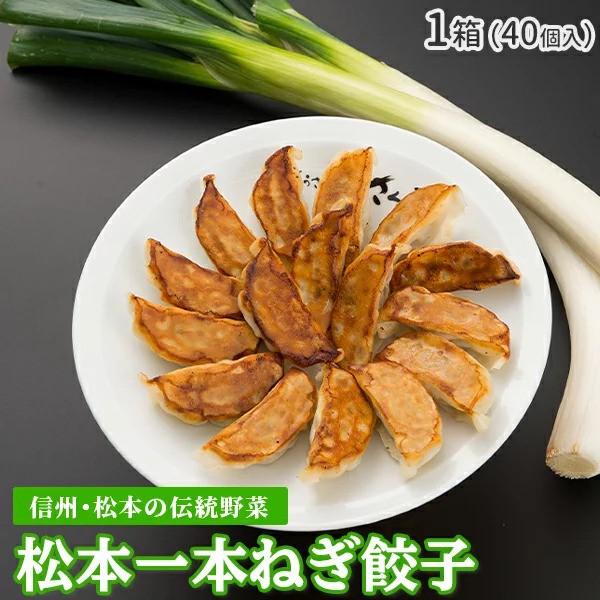 『松本一本ねぎ餃子』 40個入 餃子 おいしい 冷凍餃子 信州 伝統野菜 ぎょうざ ギョウザ ギョーザ ネギ 食品 美味しい おかず 弁当 簡単