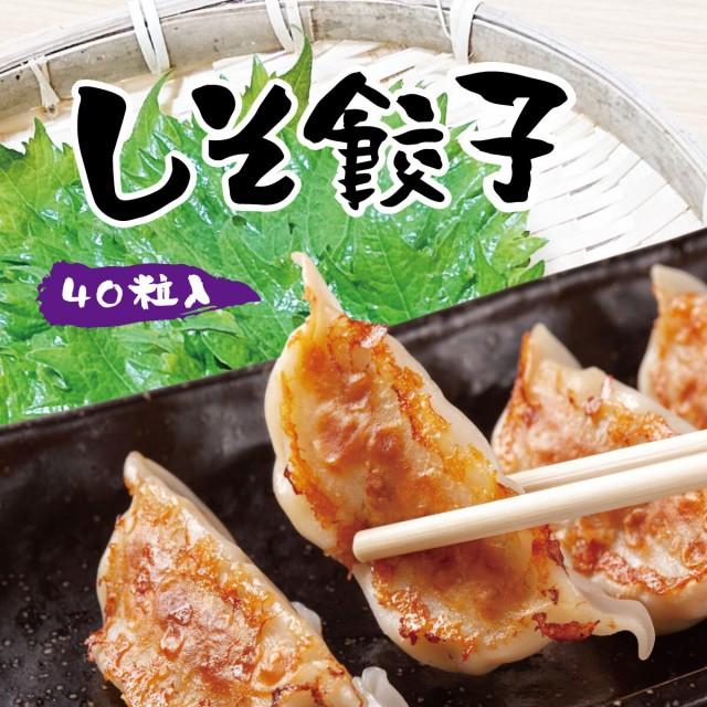しそ餃子 40個入 / ぎょうざ ギョウザ ギョーザ お取り寄せ グルメ ご当地 お取り寄せ 冷凍餃子 国産 国産野菜 国産豚肉