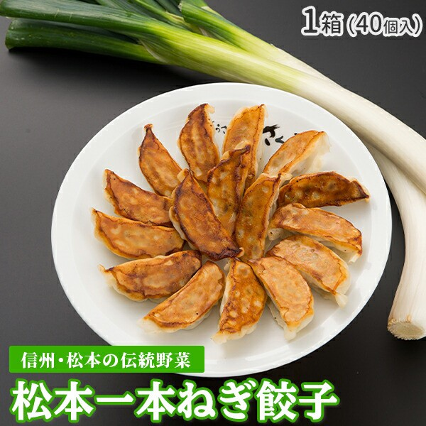 『松本一本ねぎ餃子』 40個入 餃子 おいしい 信州 伝統野菜 松本一本ねぎ ぎょうざ ギョウザ ギョーザ ネギ 食品 美味しい おかず 弁当