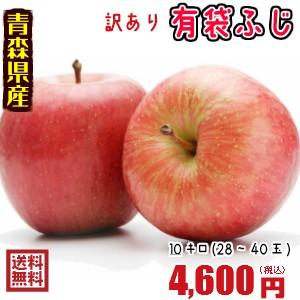 青森りんご☆送料無料☆訳ありりんご有袋ふじ10kg(10キロ)28-40玉【わけありりんご】