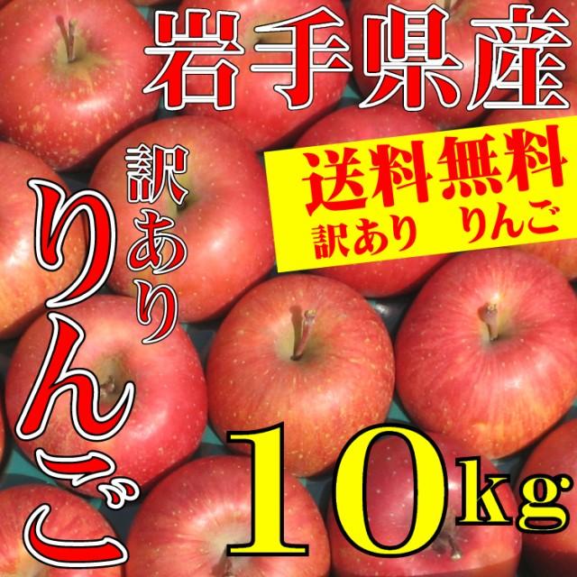 りんご 訳あり 岩手県産 10kg