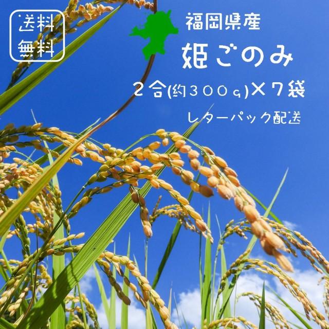 【送料無料】福岡県産 姫ごのみ 白米 2合(300g)×14 袋【<免疫力アップ>玄米・分づき精米対応可】 令和2年産 特別栽培米 ※2合ごとに