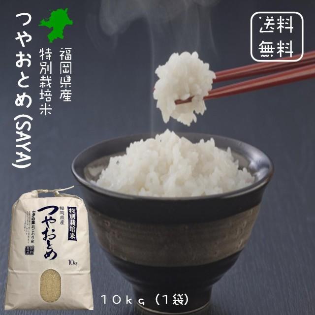 【送料無料】 福岡県産 特別栽培米 つやおとめ (SAYA) 白米 10kg(10kg×1袋)<免疫力アップ/玄米・分づき精米対応可> 令和2年